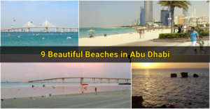 Beautiful Beaches in Abu Dhabi2