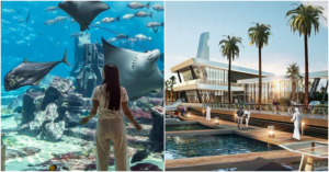 Middle East's Biggest Aquarium Opens in Abu Dhabi Next Year