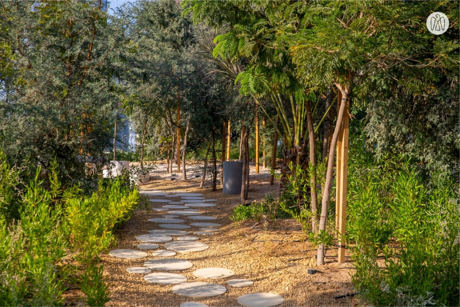 Park with 2000 Trees Opens in Abu Dhabi